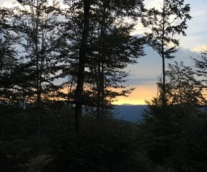 mountain, trees, and sunset image