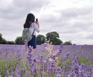 ulzzang, flowers, and purple image
