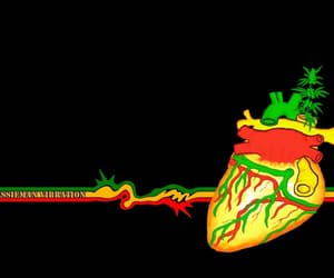 420, marijuana, and organs image