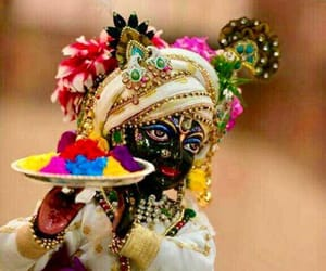 holi and Krishna image