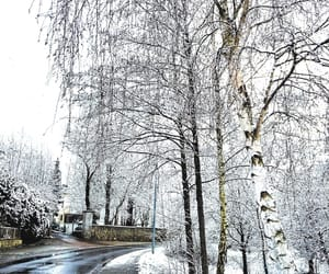 nature, snow, and street image