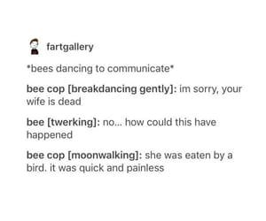 bee, bumble bee, and dance image