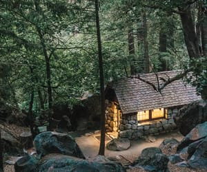 cabin, woods, and cabin life image