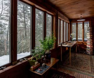 beauty, cabin, and plants image