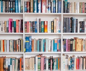 novels, article, and books image