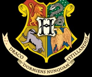 article, harry potter, and questions image