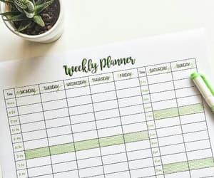 calendar, calendario, and notes image