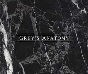 grey's anatomy and Greys image