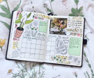 ideas, inspiration, and inspo image
