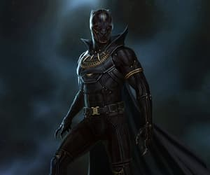 black panther, Marvel, and t'challa image