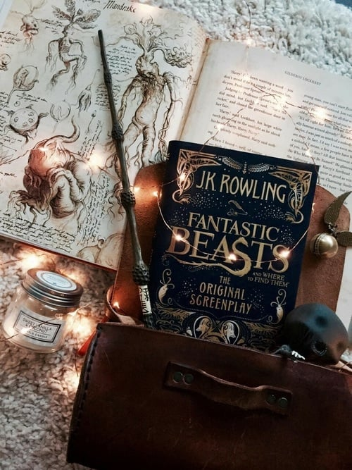 article, harry potter, and magic image