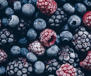 berries, blue, and blueberry image