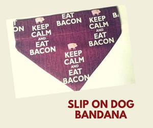bacon, dogs, and pet supplies image