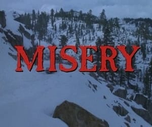 article, Stephen King, and misery image