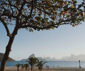 beach, brazil, and praia image