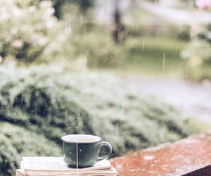 bibliophile, cup, and raindrops image