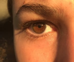 brown eyes, eye, and golden hour image