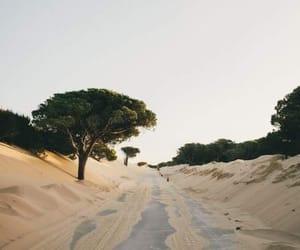 calm, sand, and desert image