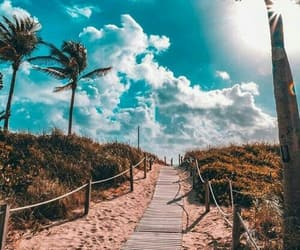 trees, beach, and paradise image