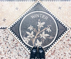 art, winter, and flowers image