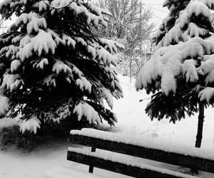 bench, ًًًًًًًًًًًًً, and ⛄ image