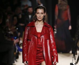 fashion, bella hadid, and Roberto Cavalli image