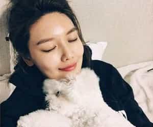 dog, girls generation, and kpop image