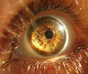 eyes and eye image