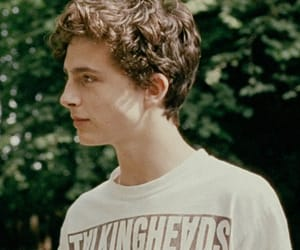 book, call me by your name, and timothee chalamet image