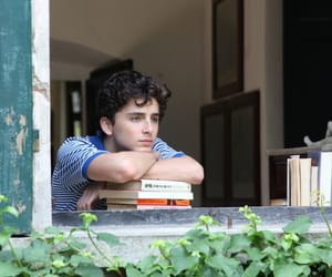 call me by your name, boy, and movie image