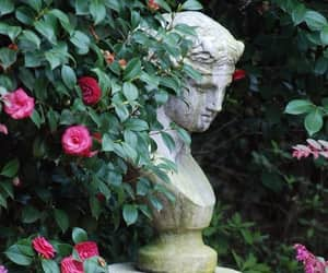 flowers, rose, and statue image
