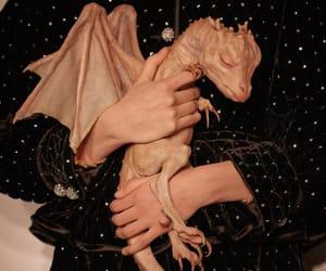 dragon, fashion, and fashion show image