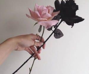 alternative, flowers, and soft grunge image