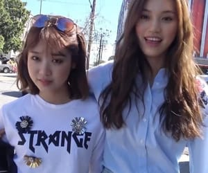 kpop, ioi, and dodaeng image