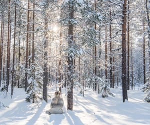 art, photography, and snow image