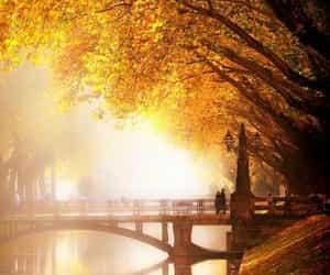 autumn, river, and bridge image