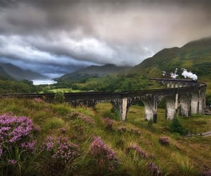 harry potter, scotland, and train image