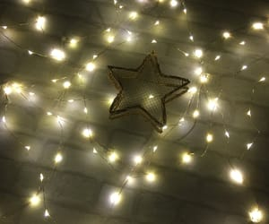 aesthetic, decoration, and fairy lights image