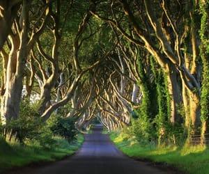 irland and travel image