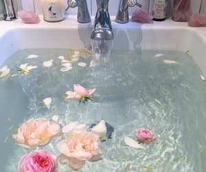 bathing, pink, and plants image