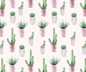 art, cacti, and draw image