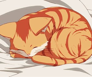 cat, anime, and gif image