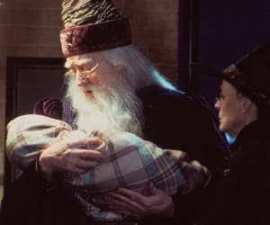 baby, dumbledore, and potter image