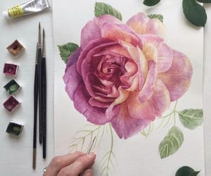 draw, rose, and flower image