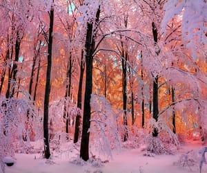 beautiful, nature, and soul image