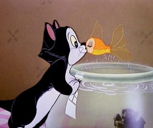 cat, disney, and fish image