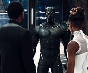 black panther, brother, and costume image