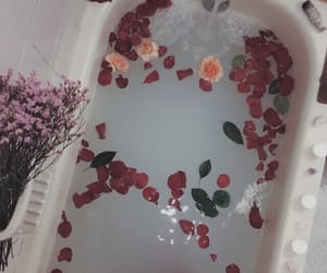 flowers, bath, and tumblr image
