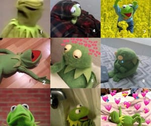 kermit the frog, meme, and mood image