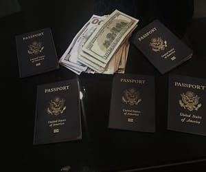 money, passport, and travel image